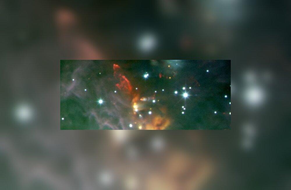 Orioni tähtkuju peidab tähtede lasteaeda