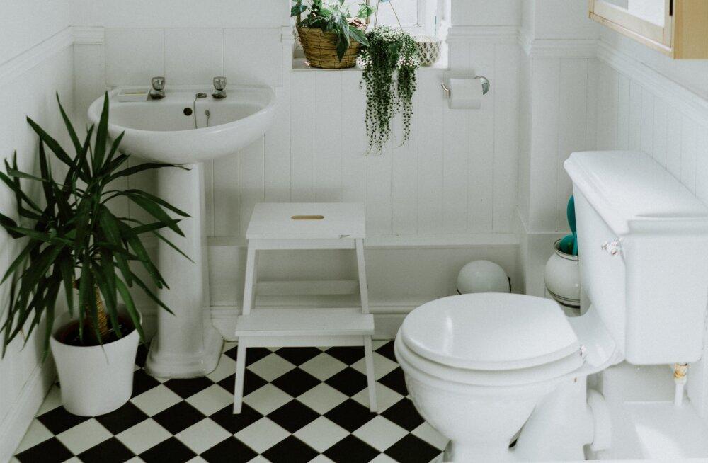 Kui sa ei taha vastikuid baktereid oma koju, siis sulge wc-poti kaas enne vee tõmbamist