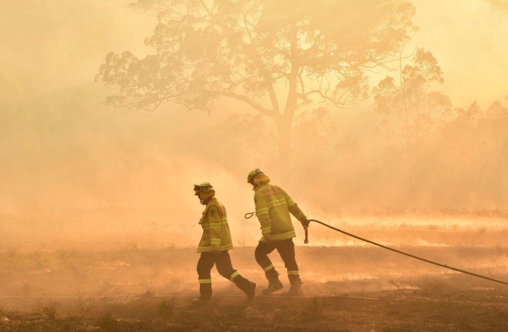 Tuletõrjujad New South Walesi osariigis