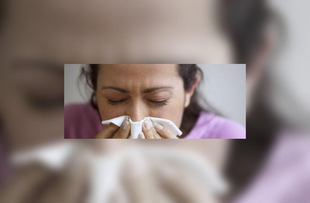 Külmetus jm haigused desorienteerivad juhti märgatavalt! Foto Blend Images Photoshot