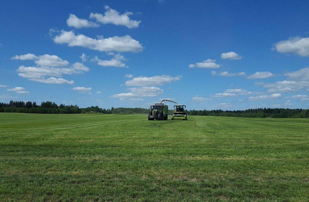 Aasta põllumehe päevik | Silotegu on täies hoos ja mais kasvab mühinal
