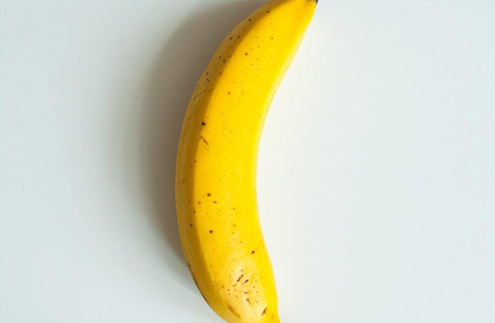 История с бананом-инсталляцией продолжается. Теперь к стенам клеят все подряд — от манго до пивных бутылок
