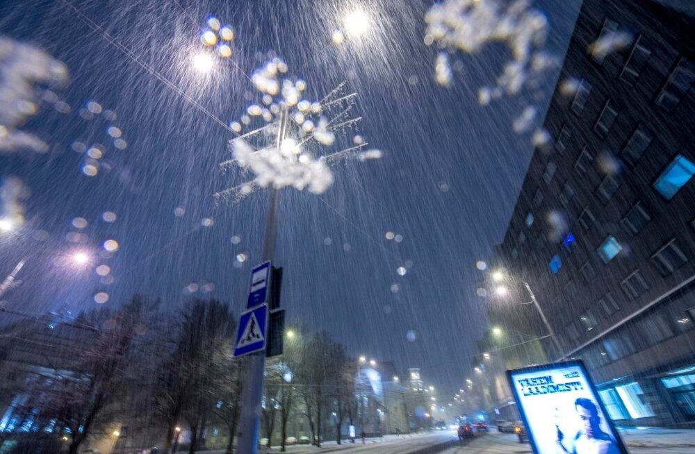 Õhtune lumesadu Tallinnas