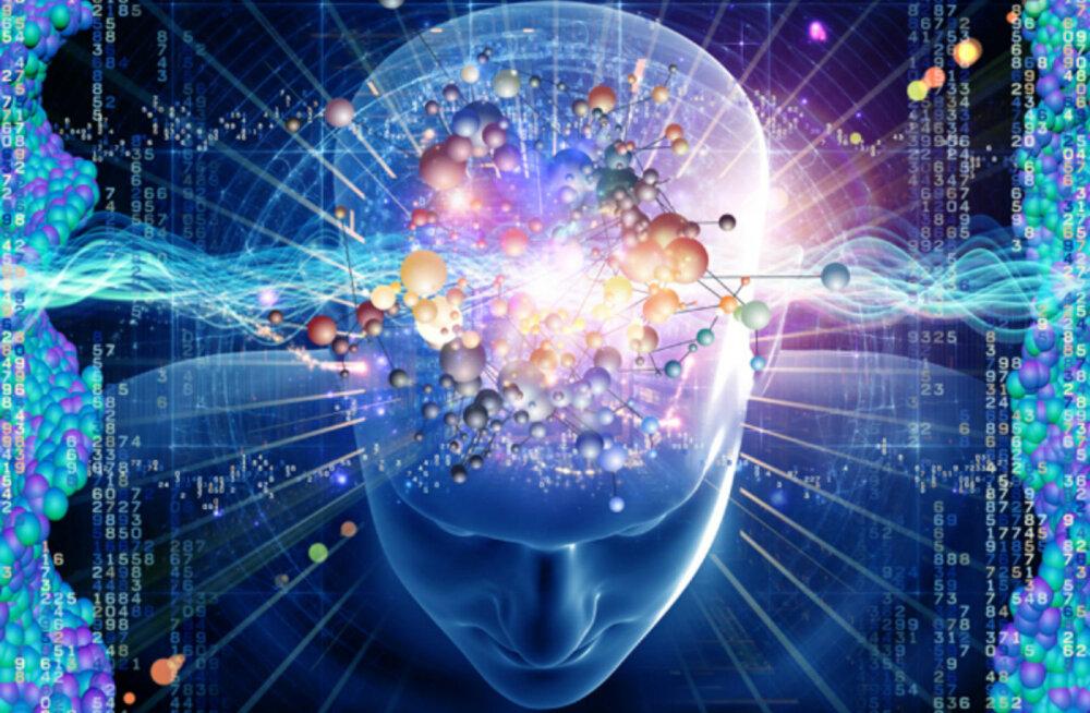 Hämmastav aju: põnevad ja uskumatud faktid
