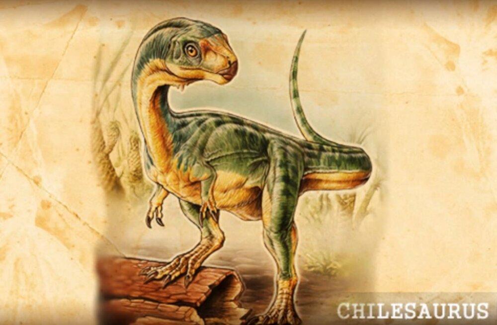 """""""Veidraim saurus üldse"""" osutus suure dinosauruste sugupuu puuduvaks lüliks"""