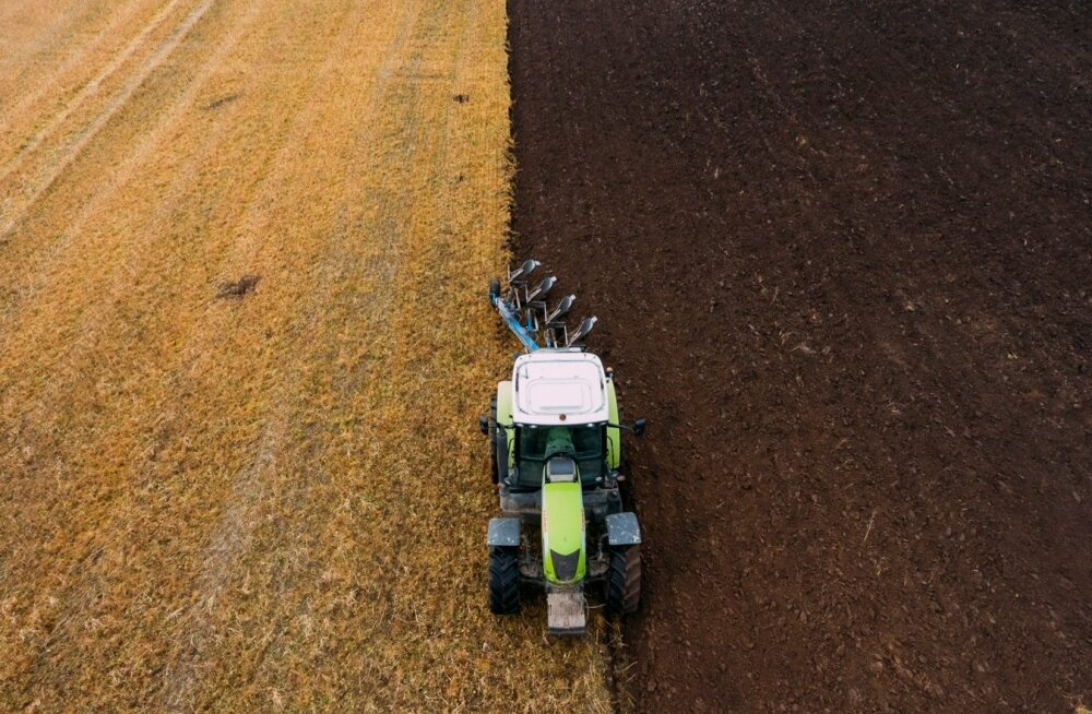 Tulevase kartulipõllu sügisene ettevalmistus