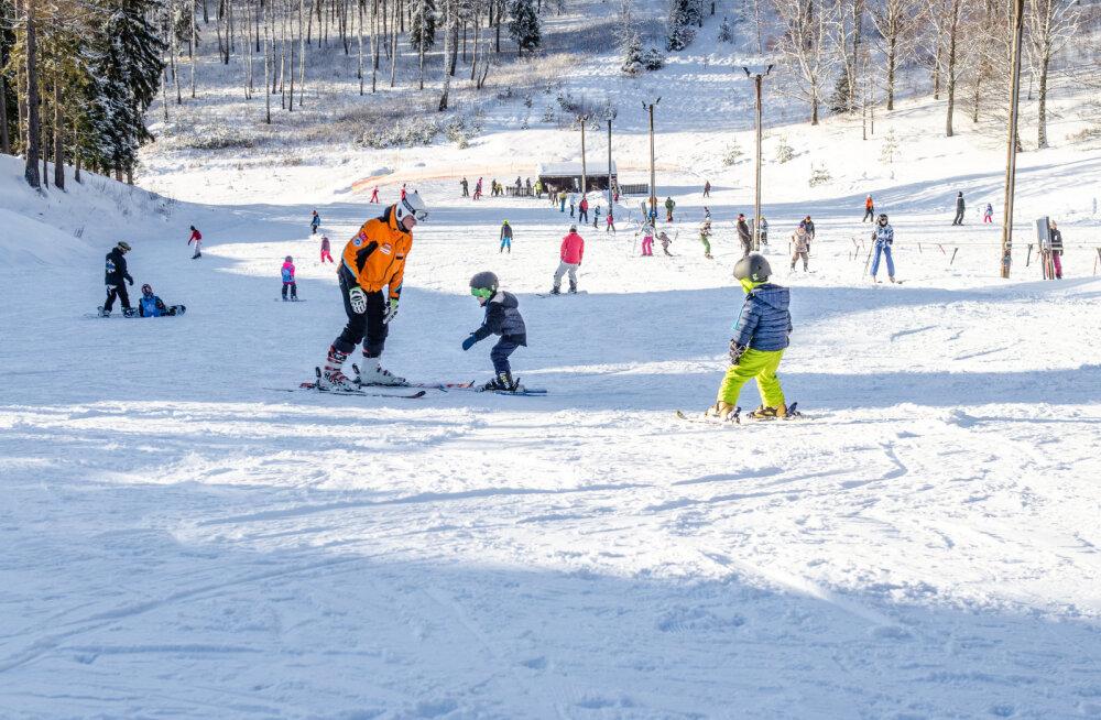 Зима в Национальном парке Гауя: девять увлекательных занятий