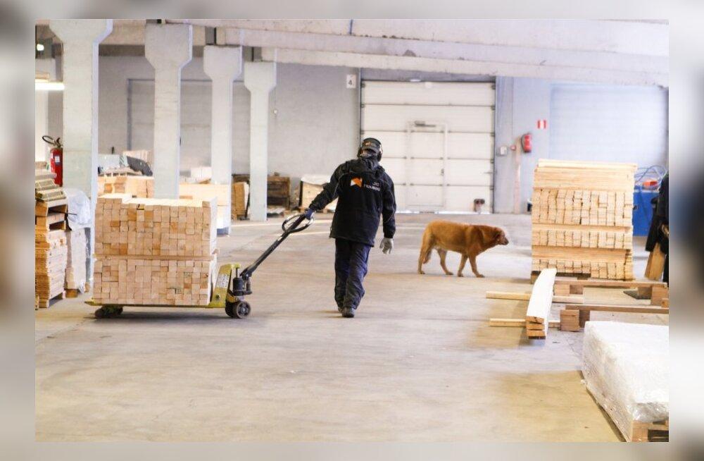 Puidutööstus veab eksporti.