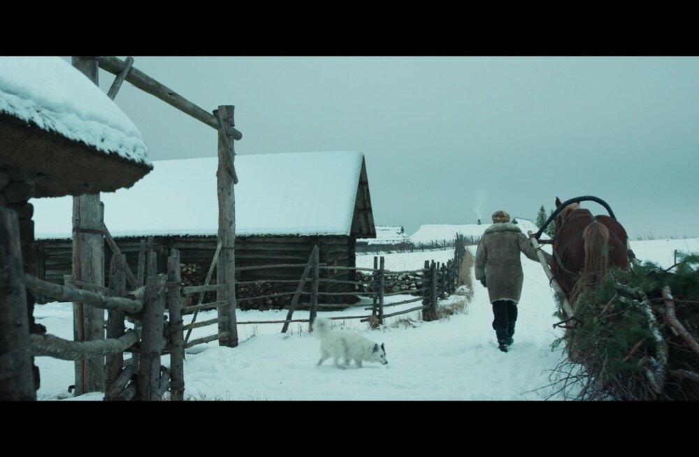 Vargamäe Andrese koera Muska rollis oli Elli-nimeline peni, kelle omanik on Relika Järveots.