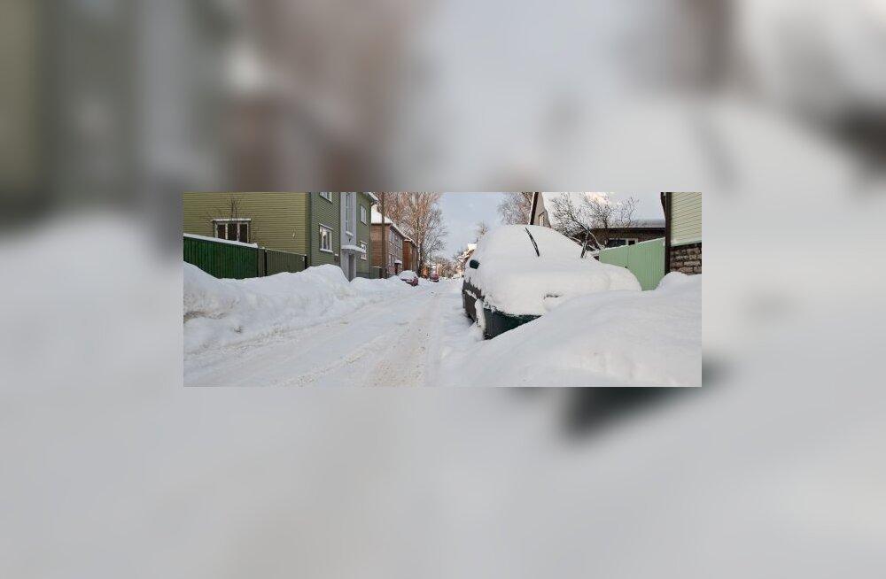 Talv saabus Tallinna