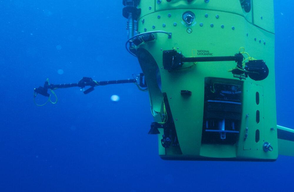 Ebaharilik metalne hääl maailmamere sügavaimast paigast - selle tekitaja on nüüd teada