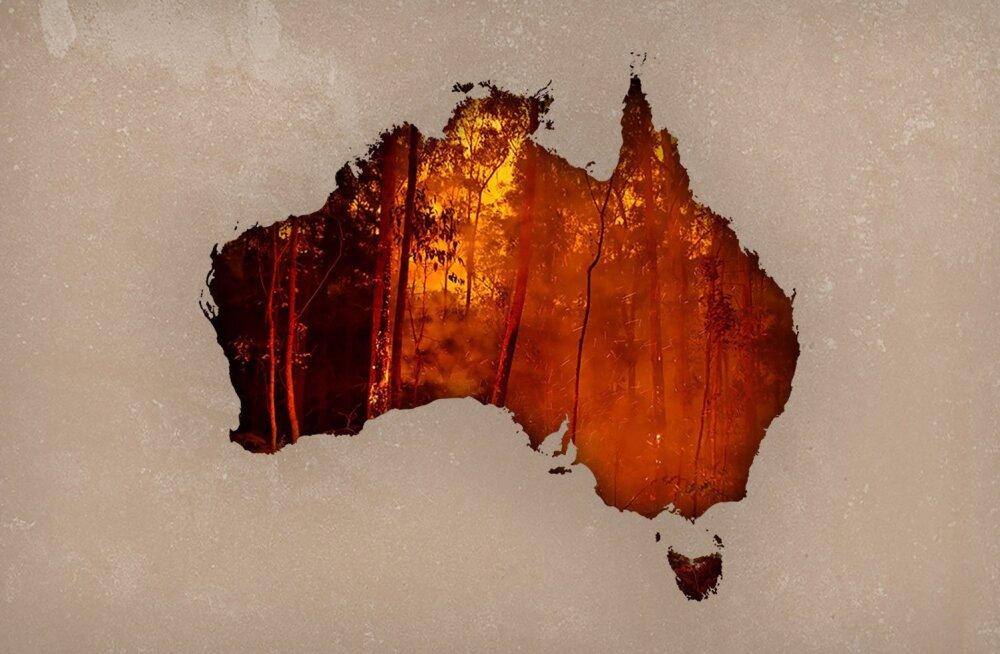 Пожары в Австралии и в мире: замкнутый огненный круг