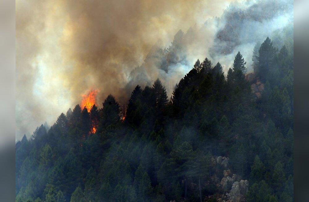 Venemaa metsapõlengud laienevad