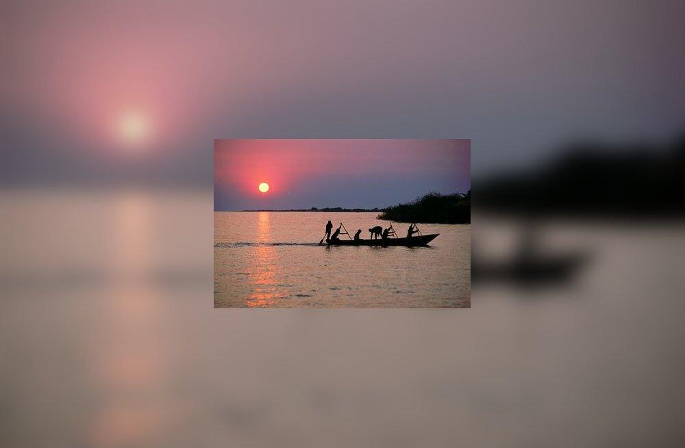 järv, Aafrika, Kongo, kalur, loojang
