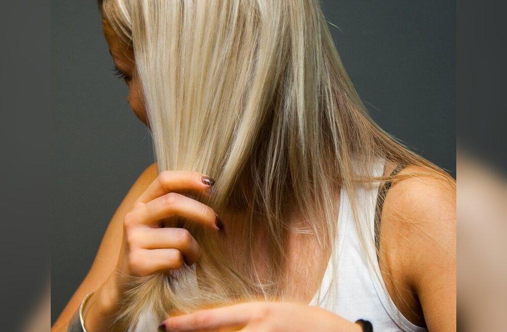 Šampoonivaba elu: Kuidas saada juuksed puhtaks seebipähklitega