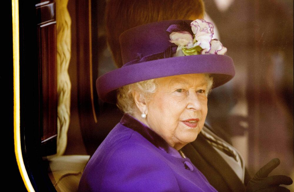 Miks kuuluvad kõik Inglismaa delfiinid ja luiged kuninganna Elizabethile?