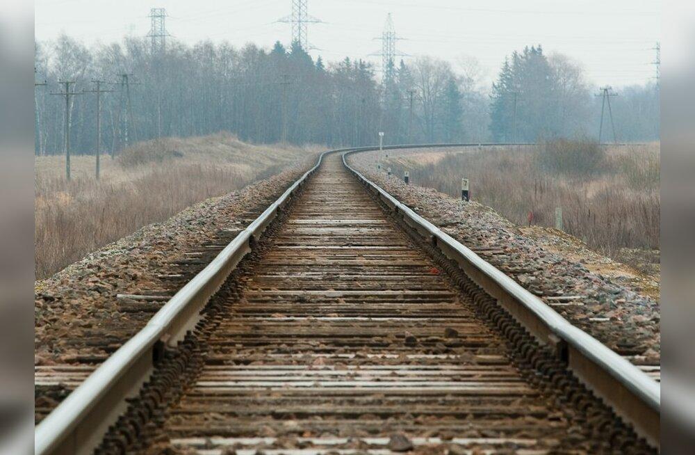 В Литве откроется первый отрезок железной дороги Rail Baltica