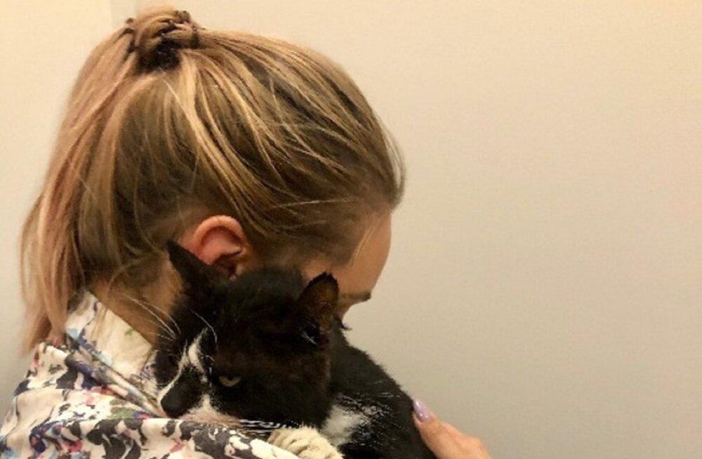 Lugu, mis läks paljudele hinge: kassil avastatud äge neerupuudulikkus nõudis jahmatava raviarve