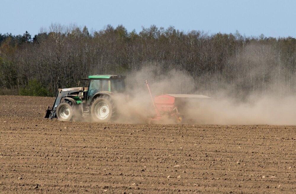 Eesrindlik agrotehnika on tugevam põuast!