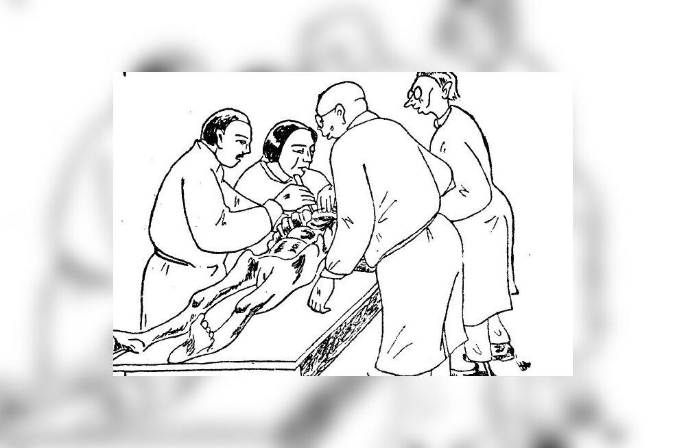 Hoogne reportaaž inimlihast ja -kontidest ehk kuidas ajakirjanik 1926. aastal Tartu Ülikooli anatoomikumis arstitudengeid külastas