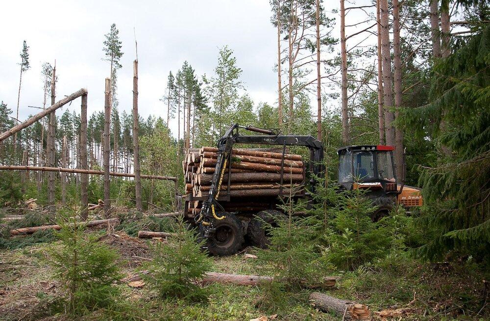 Kas kuuma ja kuiva ilmaga võivad metsatööd olla tuleohtlikud?