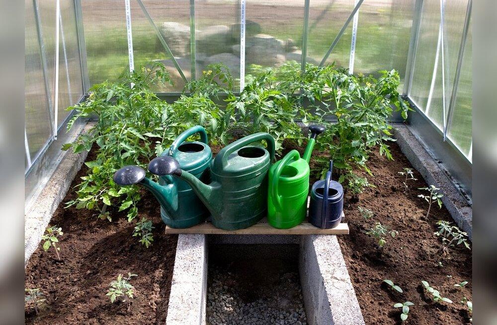 Leedo rendib aiandushuvilistele maatükke