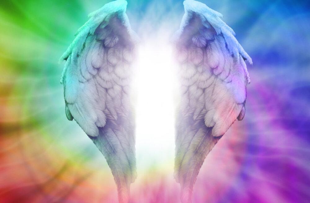 Ingel igaks päevaks | Miks ingellik energia meile nii südamelähedane on?
