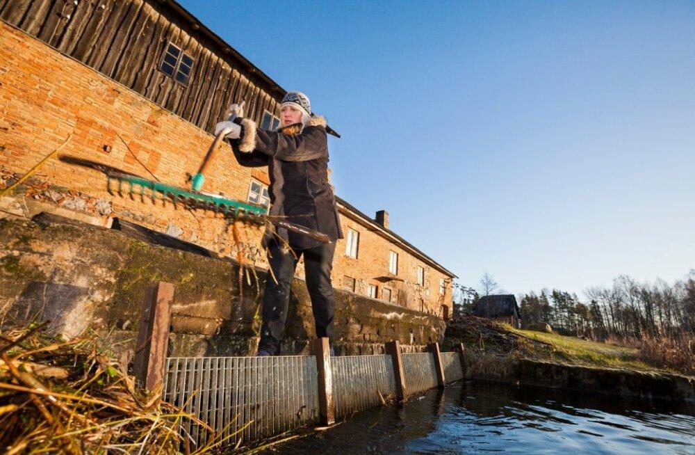 Hellenurme vesiveski perenaine Mae Juske veskitammil vee äravoolu avasid puhastamas.