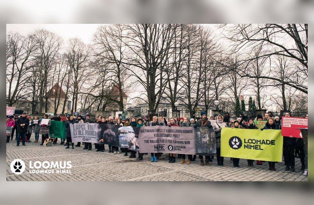 Loomakaitsjate kingitus Eestile: juba 20 Eesti moeloojat on öelnud karusnahale ei