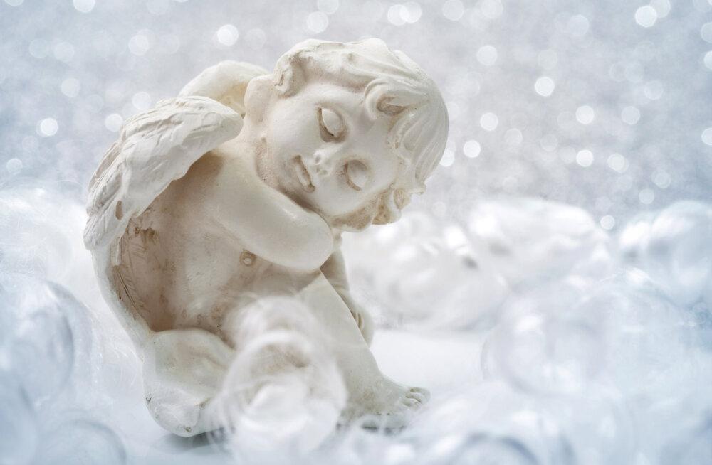 Taevane abi: inglid saavad aidata sul oma karjääri kujundada