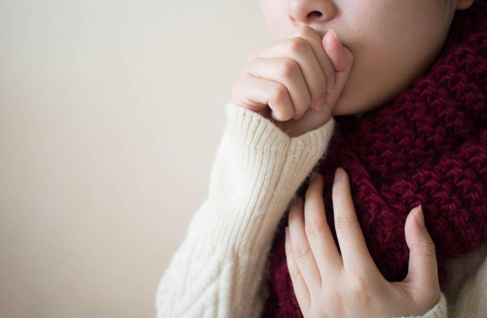 Suvel pole selleks, et kurk haigeks jääks, palju vaja.