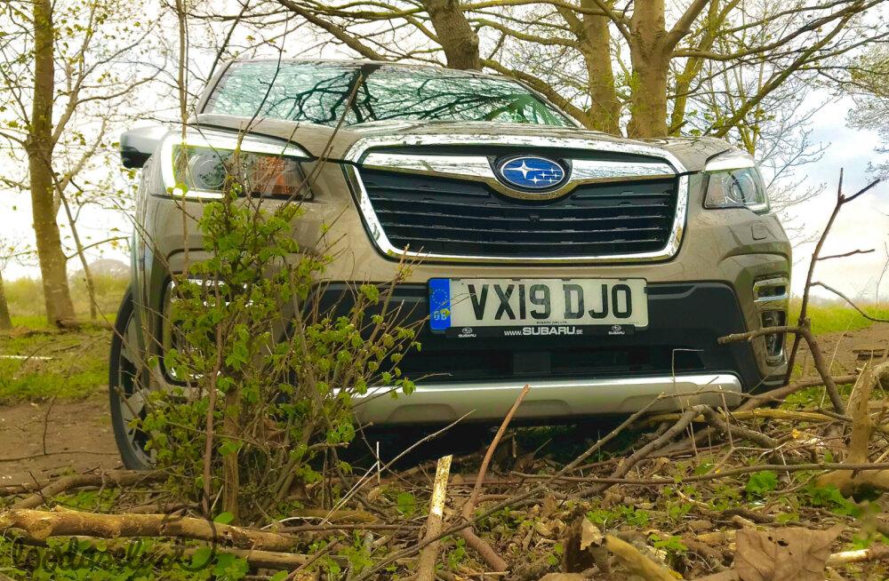 Proovisõit: uus Subaru Forester e-Boxer – maastikusuutlik pereauto