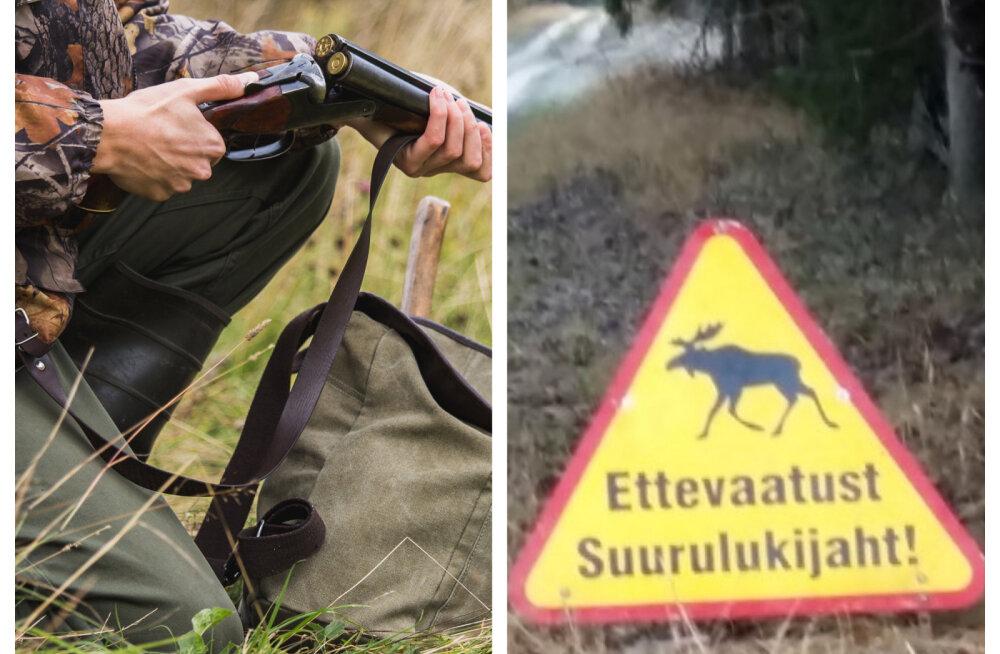 INTERVJUU | Jahihooaja ABC: lemmikloomaga metsas jalutades tasub olla ettevaatlik
