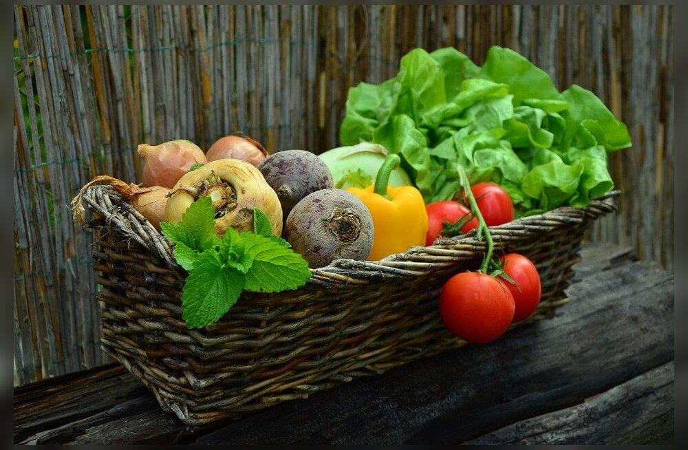 5 способов привить детям любовь к овощам