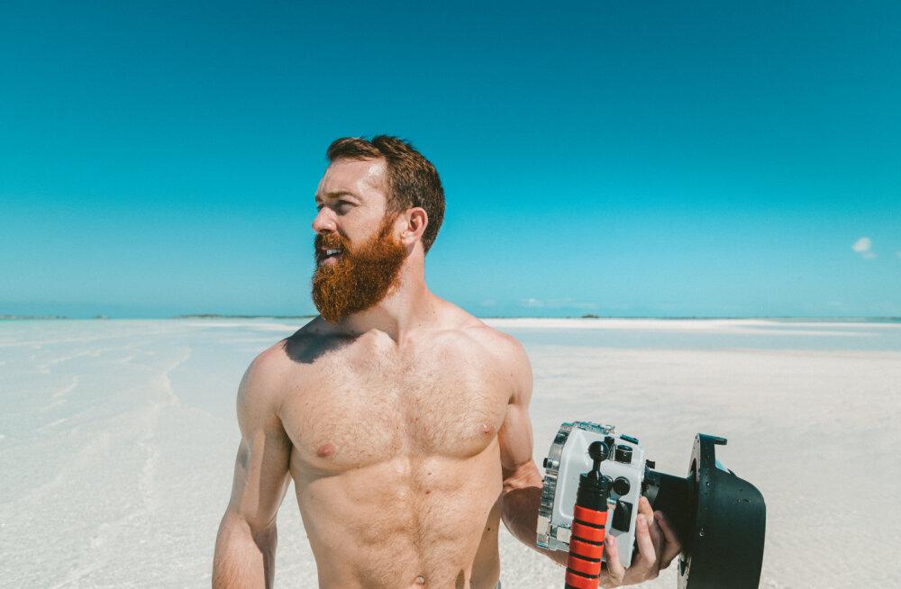 Kuidas kasvatada habet? Kaheksa soovitust algajatele