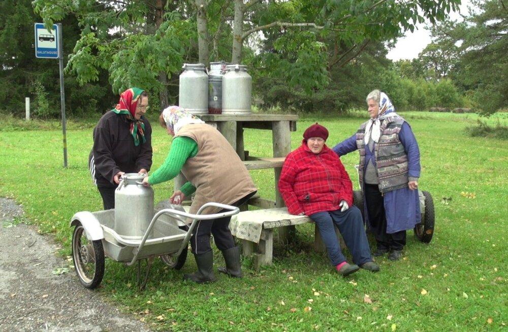 Järvamaa Salutaguse külaseltsi naised eesotsas Virve Kluustiga taaselustasid stseeni piimaauto ootamisest.