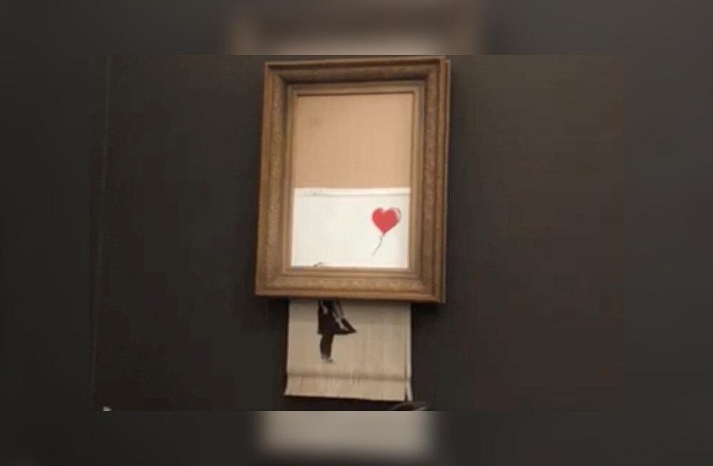 VIDEO | Kirke Kangro Banksy hävinud maalist: kunstnik võib materjalina kasutada kõike, ka ostjat