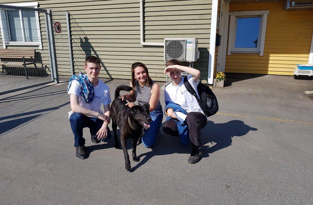 Молодые люди из Пыхья-Таллинна провели 100 часов в приюте для животных