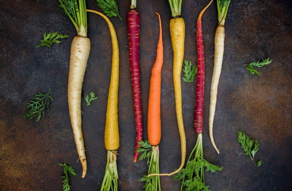 Toitumisnõustaja soovitab: üks täiega tervislik dieet
