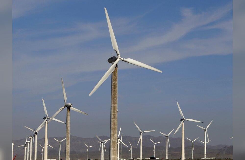 ARUTLE: Kus peaks Eestis tootma tuuleenergiat?