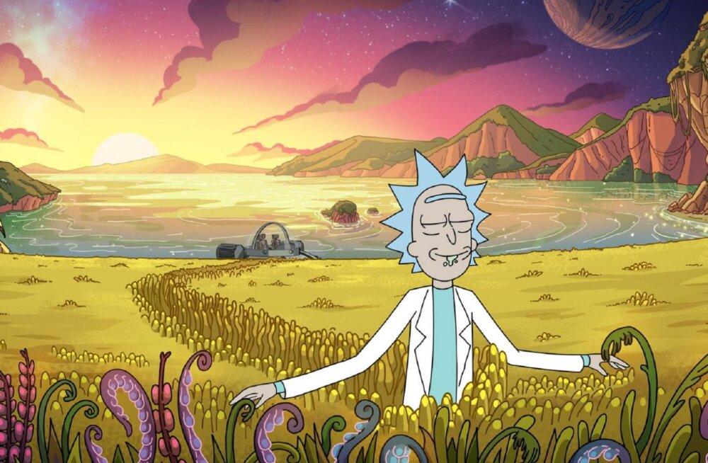 """Animaseriaal """"Rick and Morty"""": kas tõesti ainult neile, kelle IQ-test on üle 150 punkti?"""