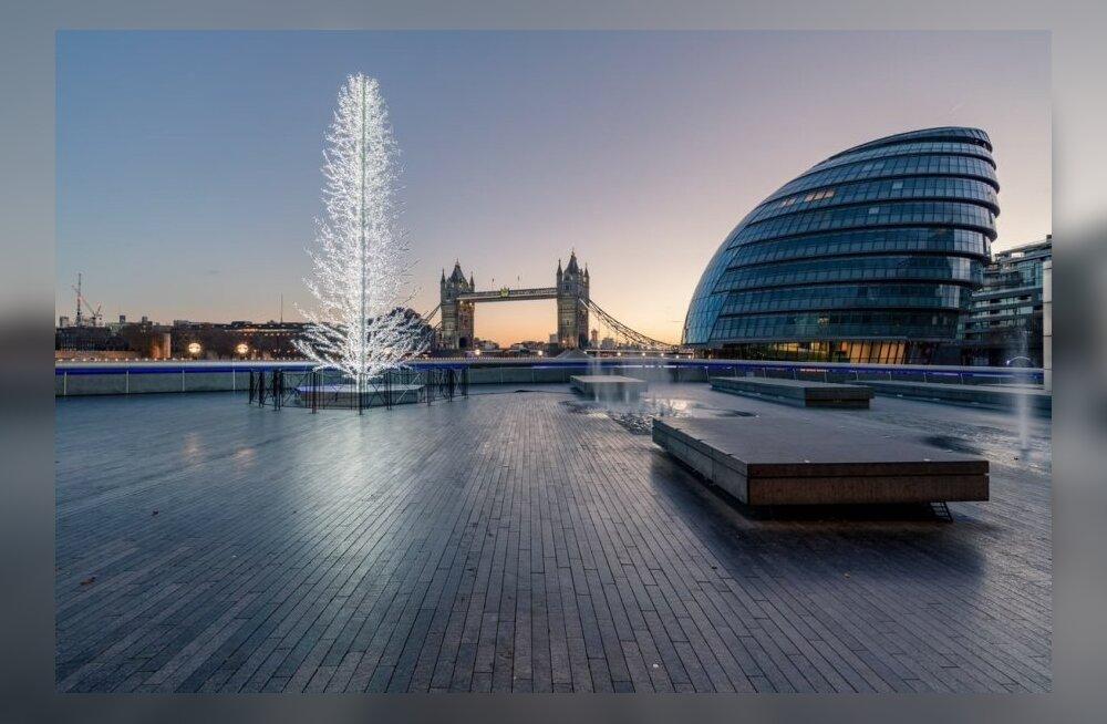 ФОТО: Эстонская фирма украсит десятиметровую елку в центре Лондона