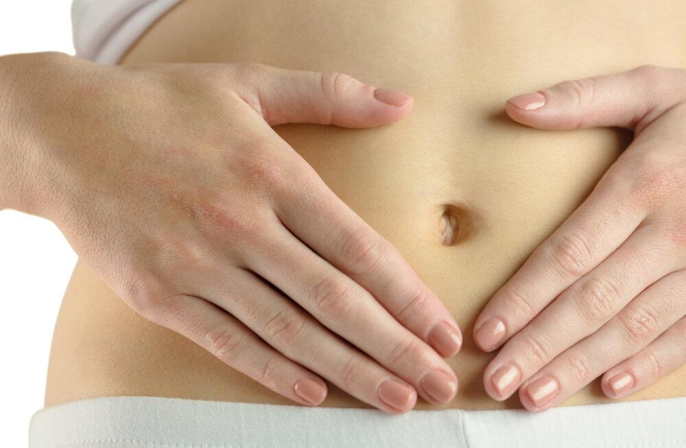 Probiootikumid täidavad inimkehas sama keerukaid ülesandeid nagu meie siseorganid