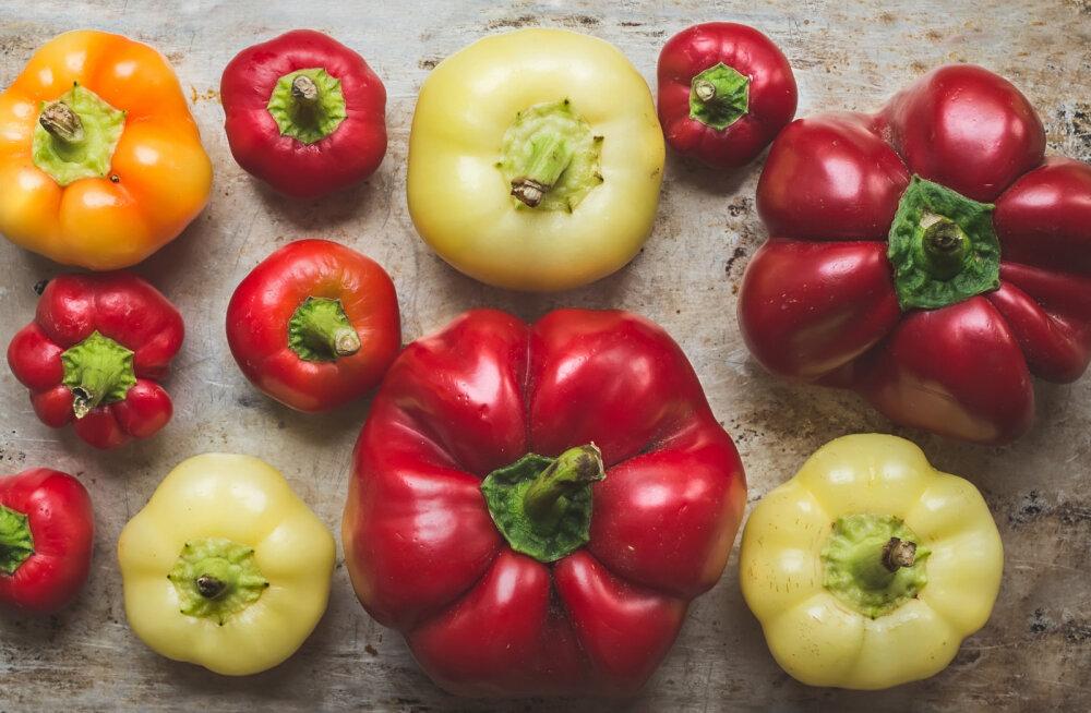 Need on kümme kõige kasulikumat toiduainet