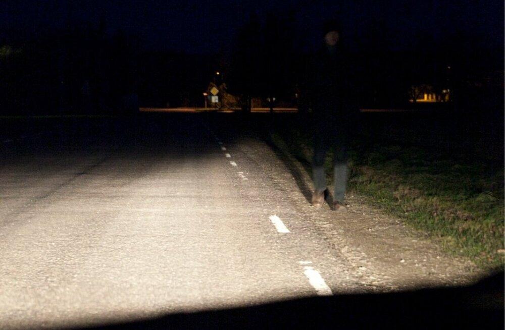 Liikleja: tahtsin maantee ääres kõndinud noormehele helkurit anda, aga ta põgenes võssa
