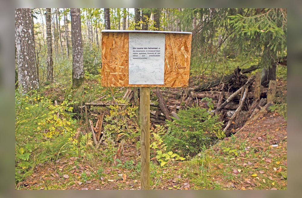 Naine viis metsavendadele mälestustahvlid
