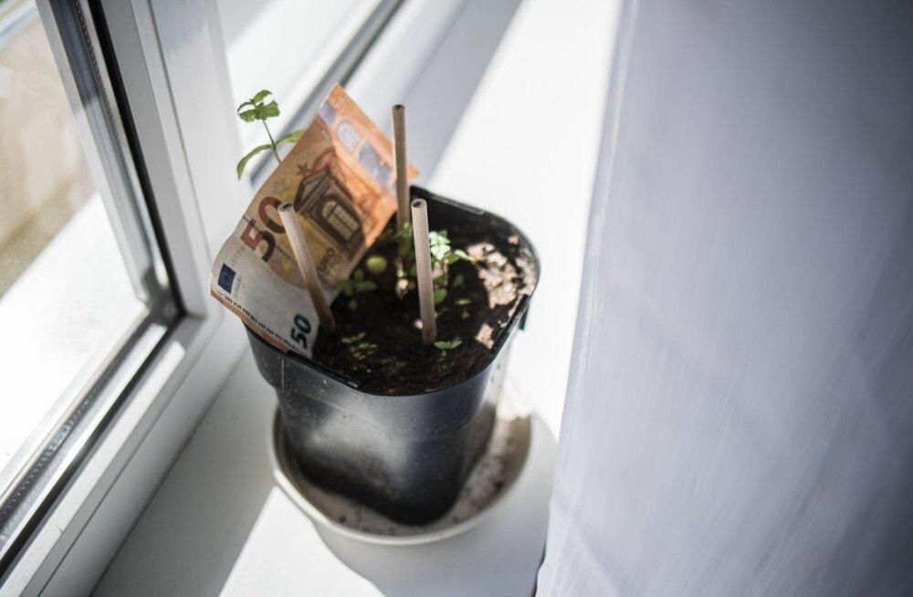 Временный выход из второй пенсионной ступени принесет дополнительно 10-20 евро в месяц