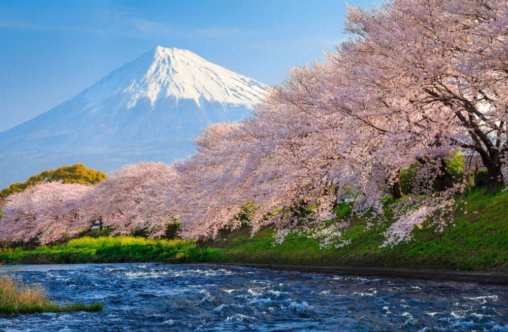 Fuji, Jaapan
