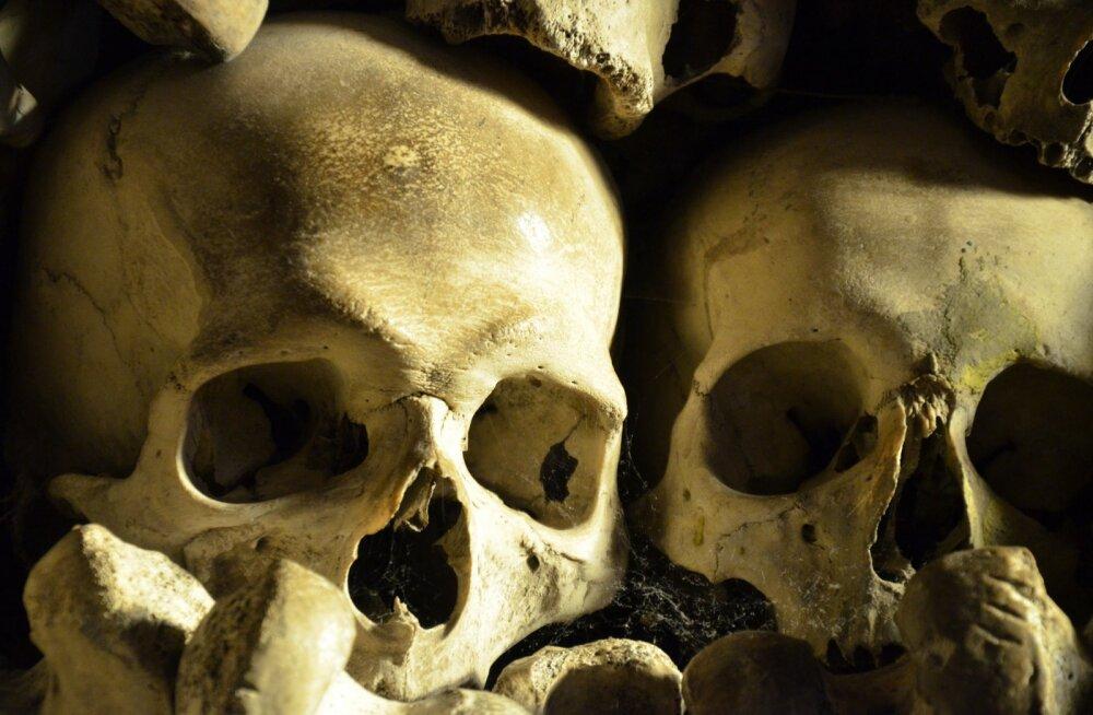 Ecuadori väljakaevamistel leiti imikud, kellel olid teiste laste koljudest kiivrid