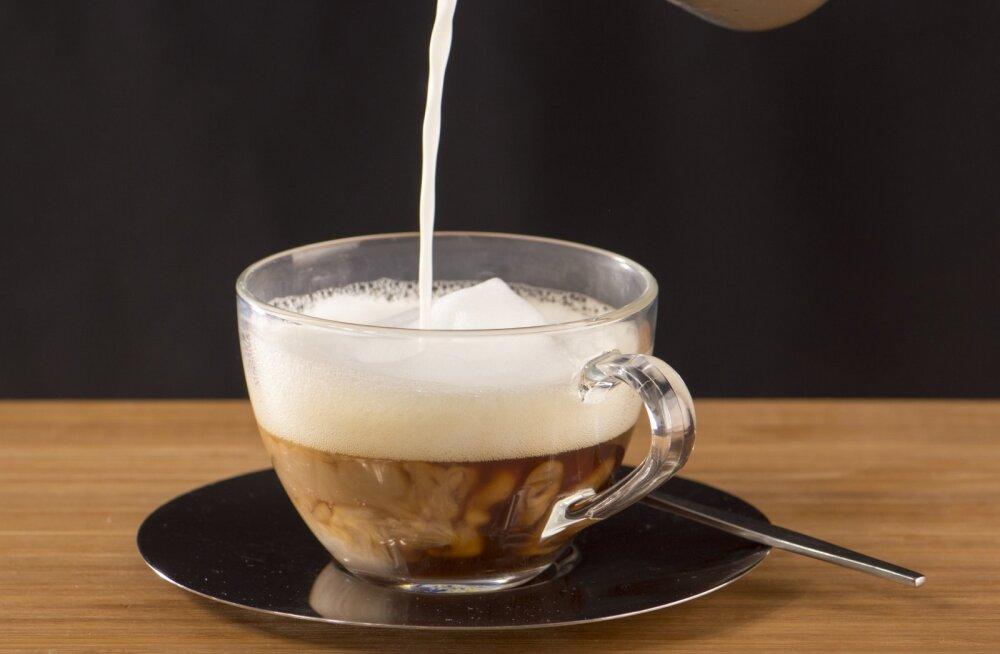 AVASTADES VILJANDIT | Pidin oma aega jagama kahe suurepärase kohviku vahel, laskmata omanikel teada saada, et käisin söömas ka nende konkurendi juures